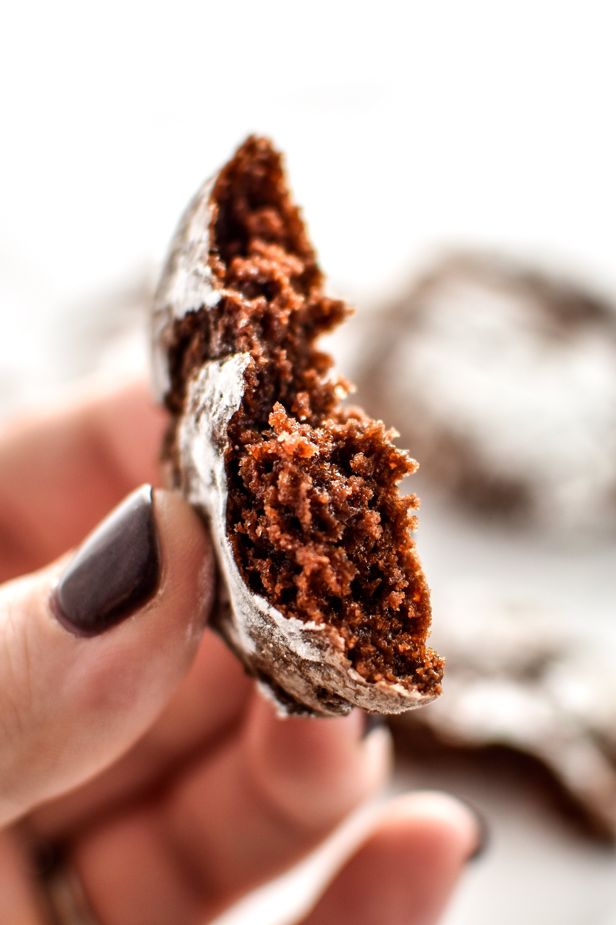 Holding a classic chewy chocolate crinkle cookie.