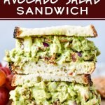 Chicken Bacon Avocado Salad Sandwich