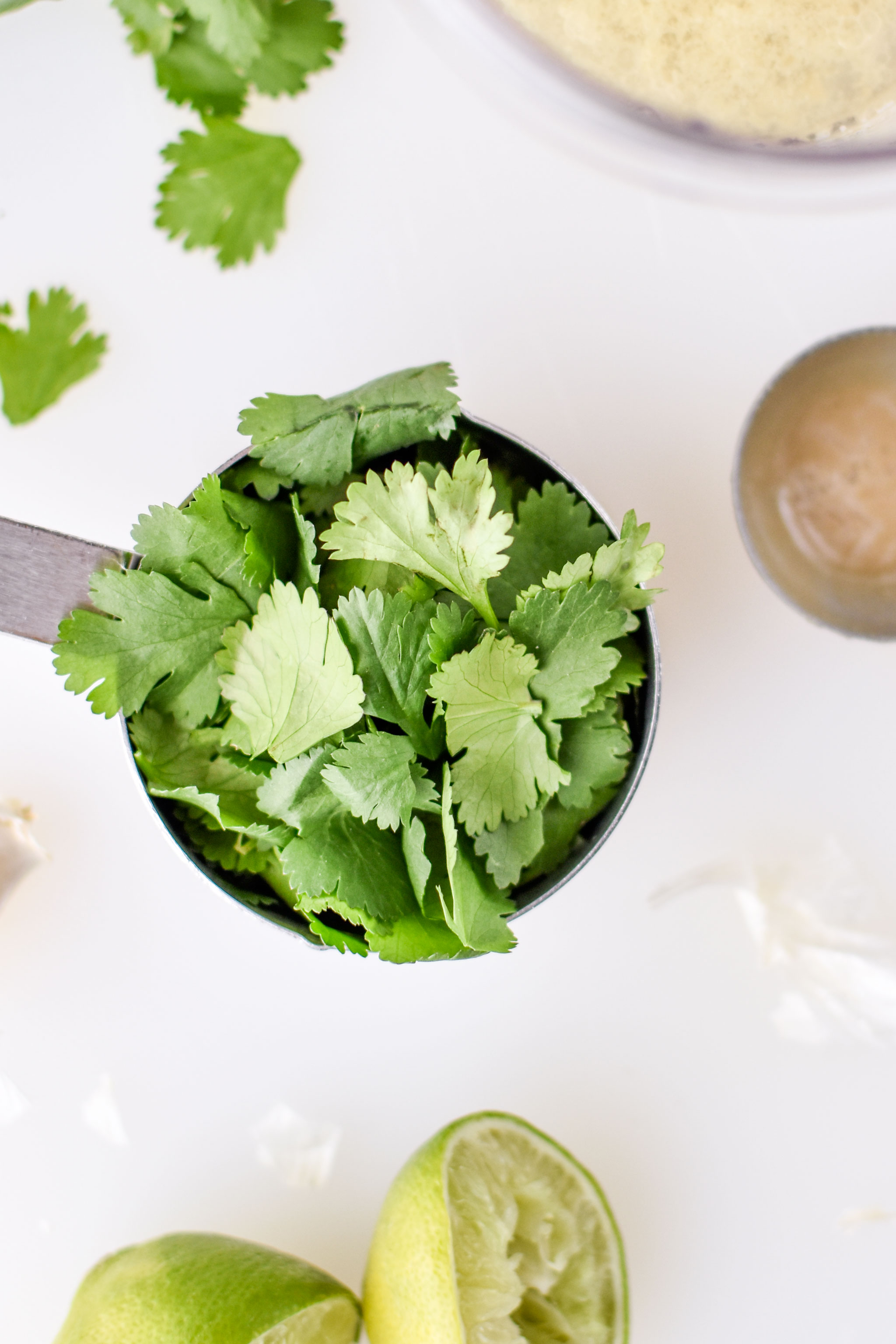 Cilantro ready to be used in the cilantro lime tahini dressing